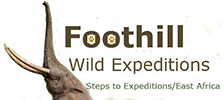 foothillwildexpeditions