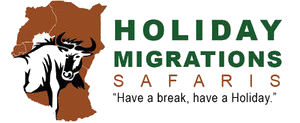 holidaymigrations